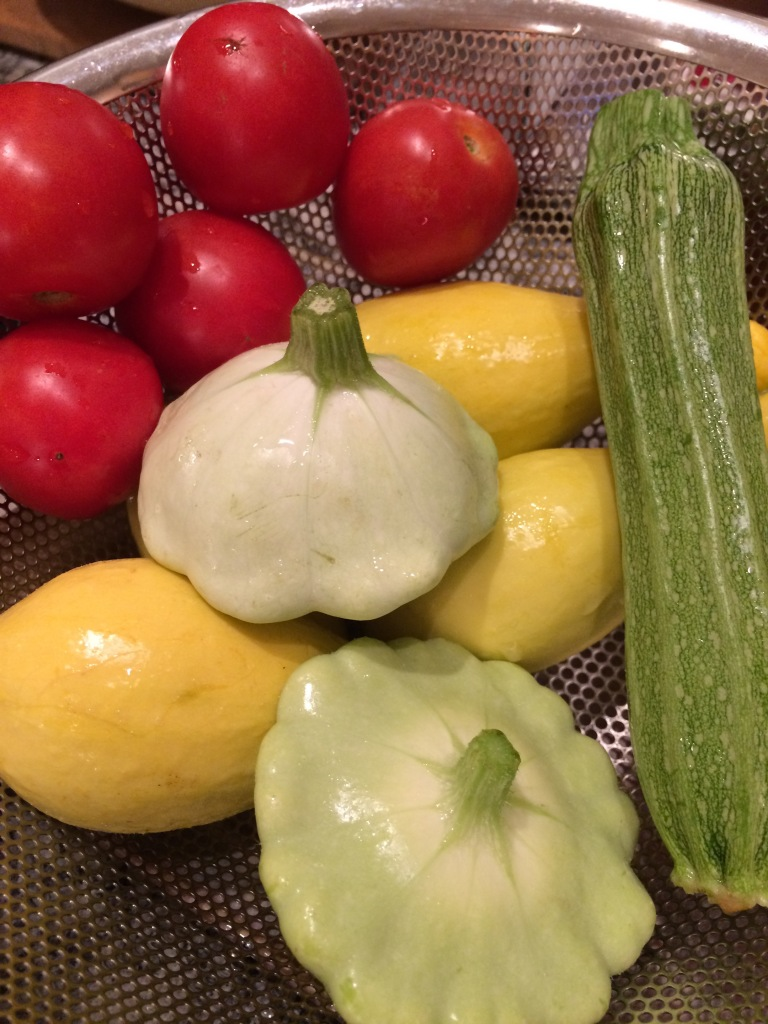 Perfect just picked summer squash and tomatoes